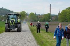 15 Weg von Braunsbedra nach Lunstädt 09.05.2017